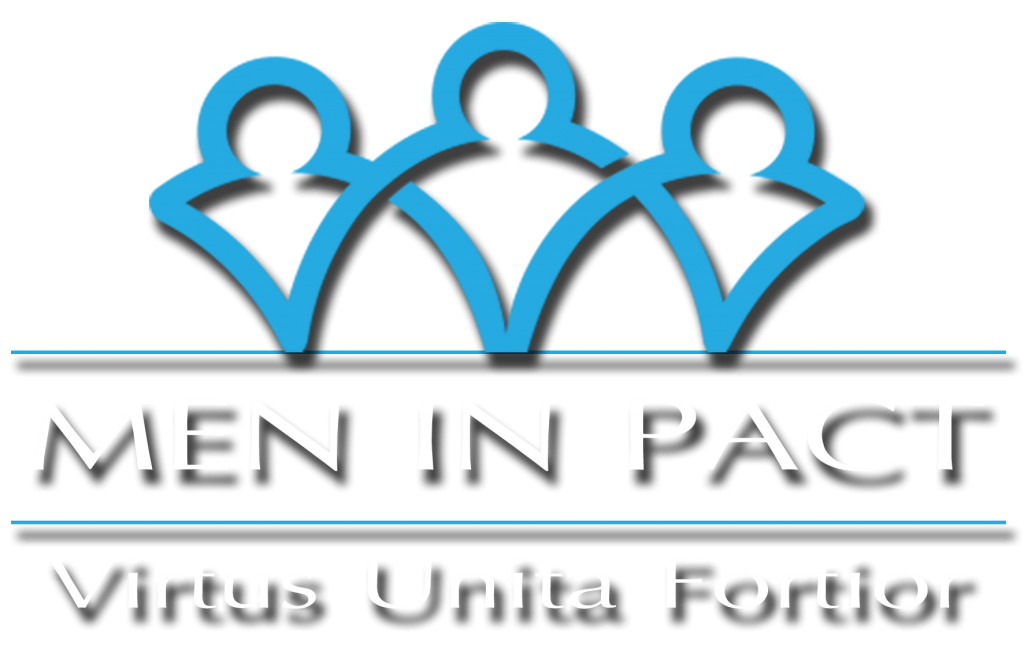 LogoMIP.fw